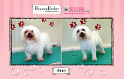 BB FB Post 118 Abby copy