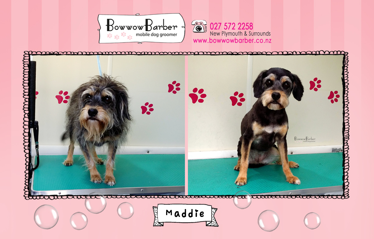 BB FB Post 66 Maddie copy