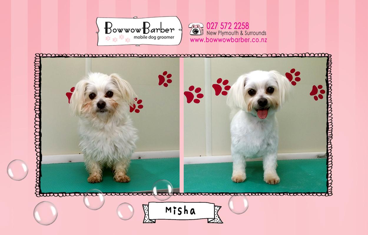 BB FB Post 19 Misha copy