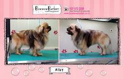 BB FB Post 53 Alby copy