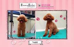 BB FB Post 32 Teddy copy