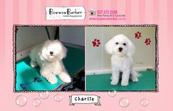 BB FB Post 90 Charlie copy