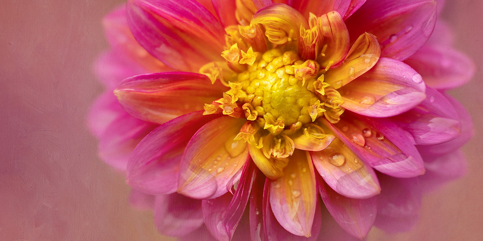 Kathleen Clemons - Adding Textures to Your Photographs