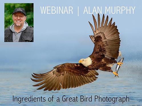 Alan Murphy Ingredients of a Great Bird Photograph (AM)