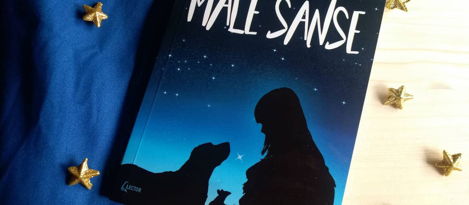 P.S. I love books o romanu ''Male šanse'' Marjolijn Hof