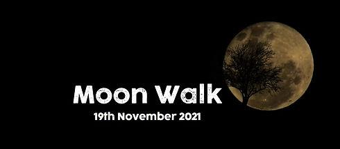 moon walk website photo.JPG