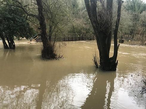 River mole flooding.jpg