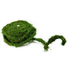 Moss Vine