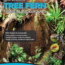 Tree Fern Panel