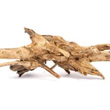 Congo Wood