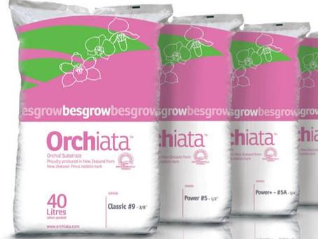 Product Spotlight: Orchiata!