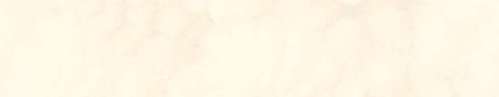 1519 x 232_