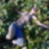Screenshot_20200408-131025.png