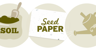 How To Plant Seeded Paper