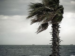 Rainy California Friday