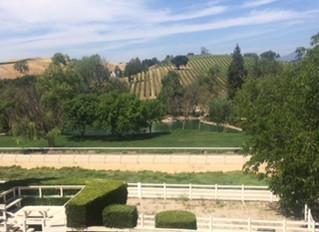 Beautiful Santa Ynez Valley