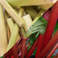 Rhubarb with Lemongrass