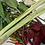 Thumbnail: Thai Strawberry