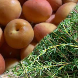 Apricot with Thyme
