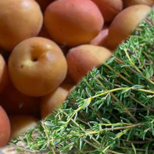 Apricot with Thyme Jalm