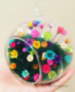 Magic Sleeping Flower, 10yearsflower,Valentines best gifts