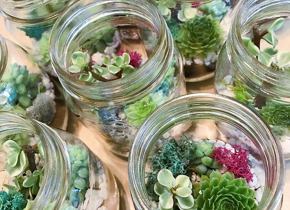 WORKSHOP - Succulent Terrarium in Mason Jar