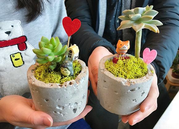 LOVE WORKSHOP FOR COUPLES - Succulent Terrarrium