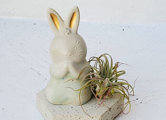 Handmade Cement Bunny with Air Plant
