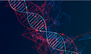 Anavex Life Sciences to Present at the Dawson James Securities 6th Annual Conference
