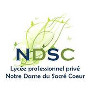 ISV-NDSC.PNG