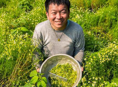 「黃嘉銘有機農場」| 在有機的土地上 我種的是信任