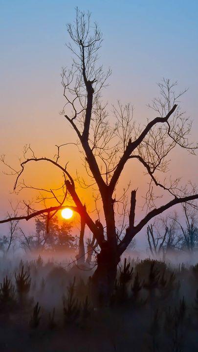 Sunrise near Winchester GA