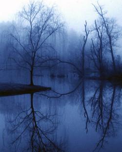 Blue-Morning-Mood