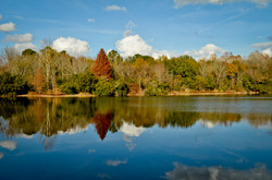 Kinchafoonie Lake S. GA