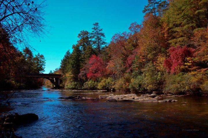 Amicalola River - Dawson County GA