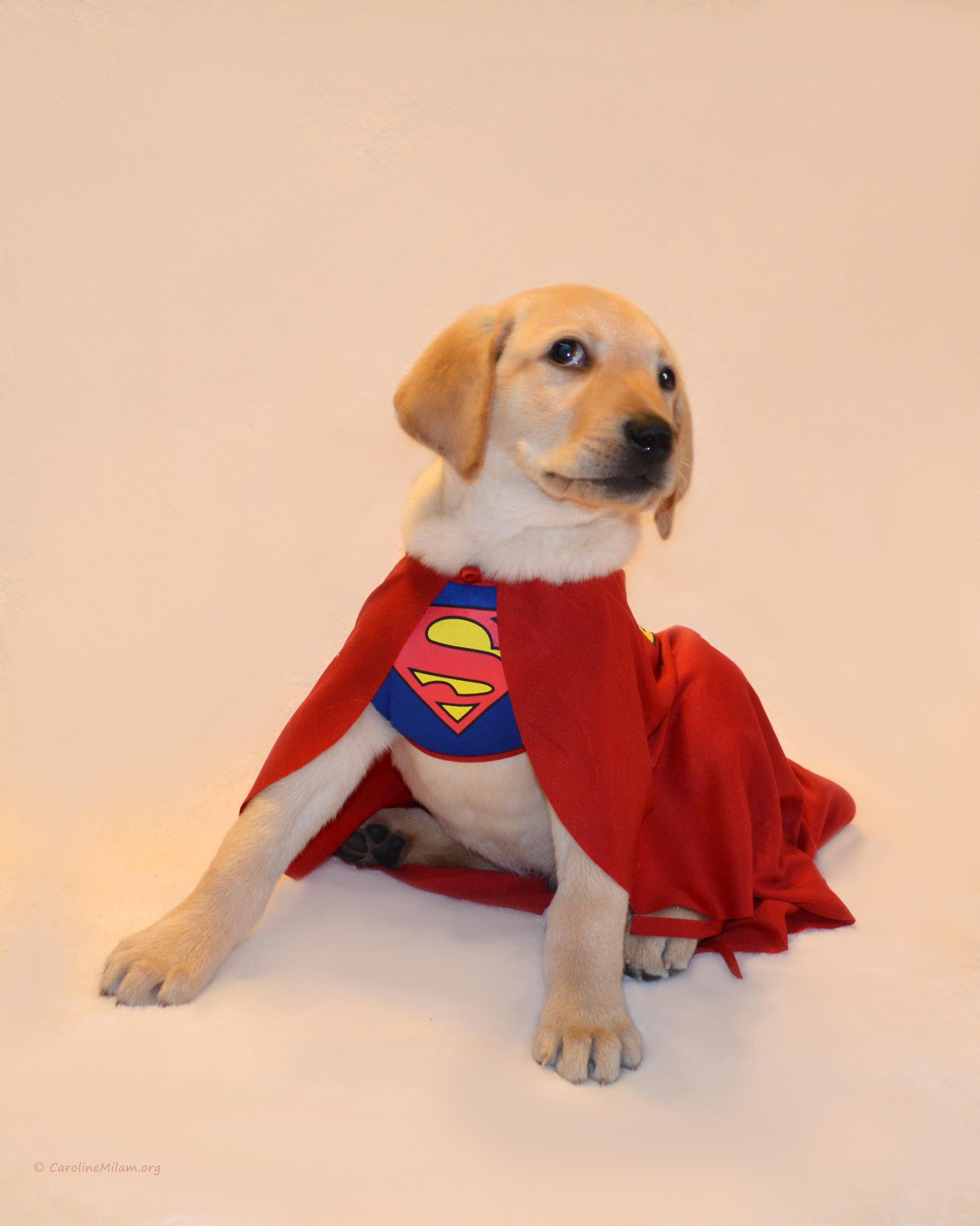 Super-Buster