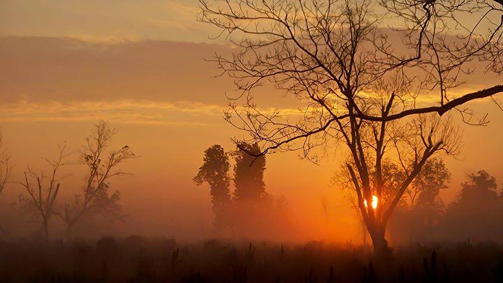 Sunrise near Albany GA
