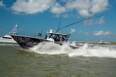 Boat_Parade_Web-196.jpg