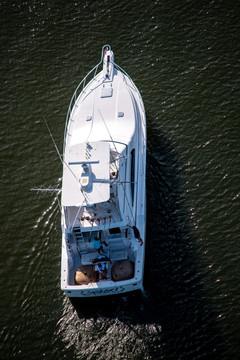 boat parade -15.jpg