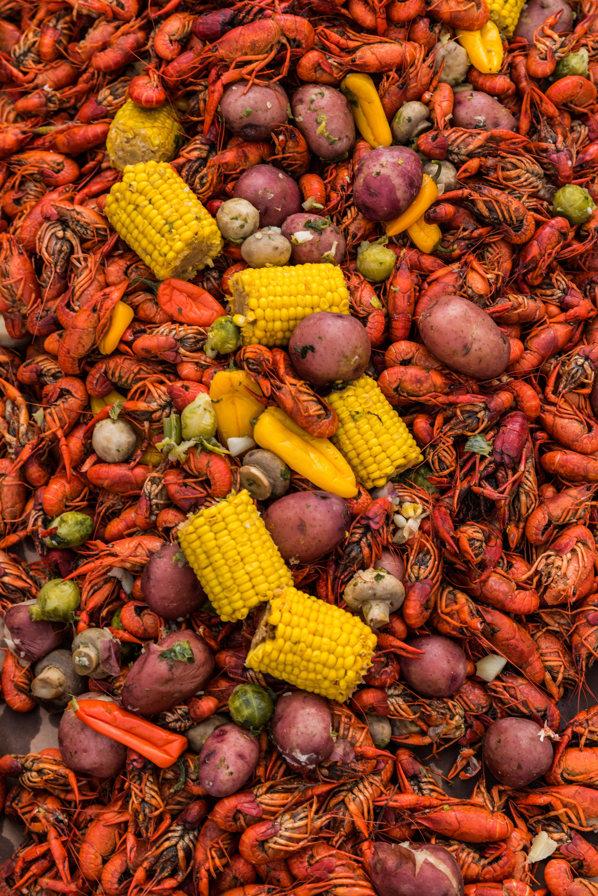 150 lb pile of Crawfish at The Shed BBQ & Blues Joint. The Shed is one of the only restaurants on the coast that serves premium select crawfish, aka they are baby lobsters.