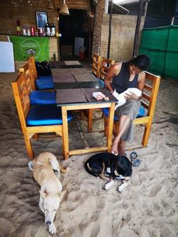 Samita owner and her animals