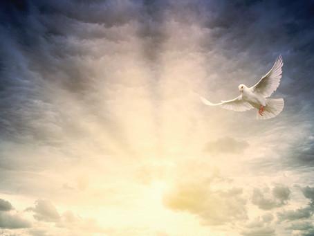 The Purpose of Spirit Empowerment