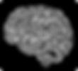 mozek01.png