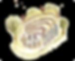LOE-SNEM-01_YELLOW.png
