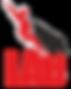 NAVI-logo12ONLY.png
