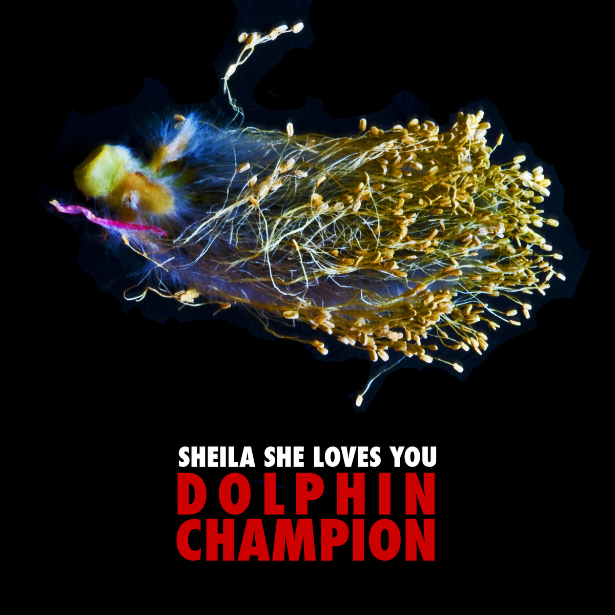 Sheilas, Single Produktion