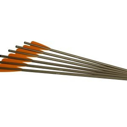 "2213 ALUMINUM ARROWS 20"" XX75 (6PK)"