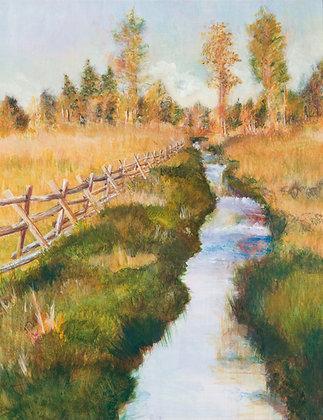 Boone Creek II