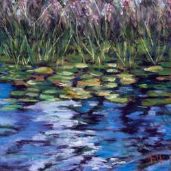 Pond Reflections LA22