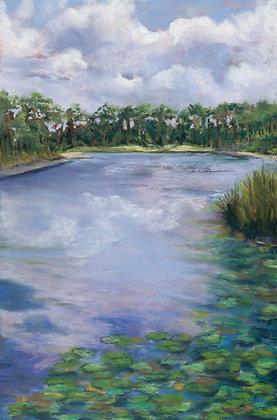 A Monet Morning